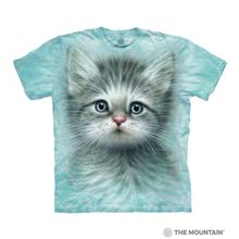 Blue Eyed Kitten Human T-Shirt by The Mountain