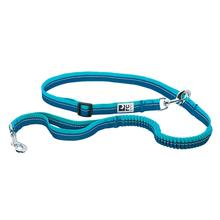 Bungee Active Dog Leash by RC Pets - Arctic Blue and Teal