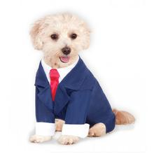 Business Suit Dog Costume - Navy