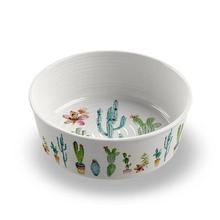 Cactus Pet Bowl by TarHong