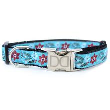 Winterberry Dog Collar by Diva Dog