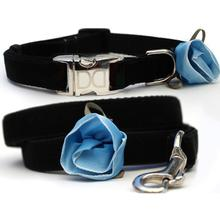Carnation Blue Velvet Small Dog Collar and Leash Set by Diva Dog