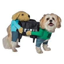 Carrying Piano Dog Costume