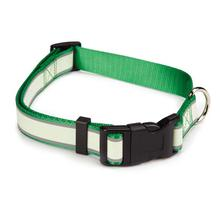 Casual Canine Glow Nylon Dog Collar - Green