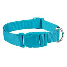 Casual Canine Nylon Dog Collar - Bluebird