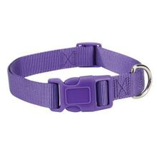 Casual Canine Nylon Dog Collar - Ultra Violet
