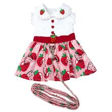 Strawberry Picnic Dog Harness Dress with Leash by Doggie Design