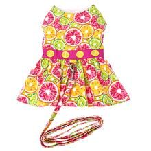 Citrus Slice Dog Harness Dress with Leash by Doggie Design