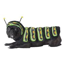 Caterpillar Halloween Dog Costume
