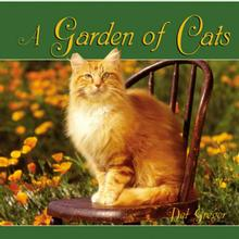 A Garden of Cats Book for Human