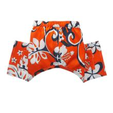 Cayman Dog Swim Trunks - Orange