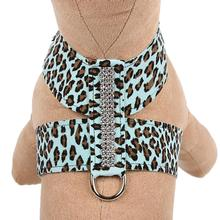 Cheetah Couture Giltmore Tinkie Dog Harness by Susan Lanci - Tiffi Cheetah