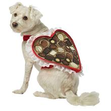 Chocolate Box Dog Costume