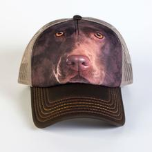 Chocolate Lab Face Trucker Hat by The Mountain