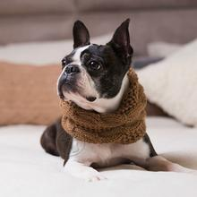 Chunky Cable Alpaca Dog Scarf by Alqo Wasi - Camel