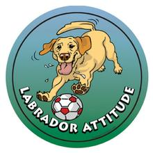 Circle Attitude Magnet Collection - Labrador