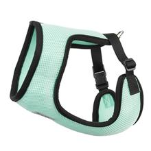 Cirque Dog Harness - Mint