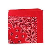 Classic Paisley Dog Bandana - Red