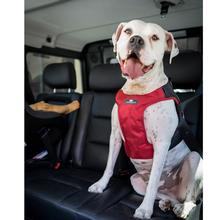 Clickit Terrain Car Safety Dog Harness By Sleepypod - Strawberry Red