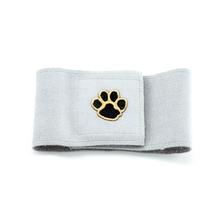 Paws Wizzer Dog Belly Band by Susan Lanci - Platinum