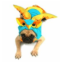 Colorful Owl Dog Costume