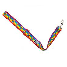 Rainbow Paws Wide City Dog Leash by RC Pets