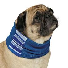Cool Pup with Insect Shield Dog Neck Gaiter - Blue