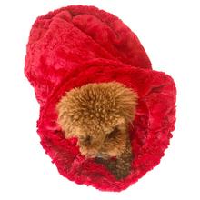 3-in-1 Cozy Dog Cuddle Sack - Red Bella