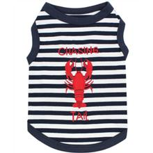 Lobster Chasing Tail Dog Tank by Parisian Pet - Navy
