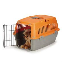 Cruising Companion Carry-Me Dog Crate - Mandarin