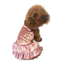 Crushin' on YOU Metallic Velvet Dog Dress - Rose