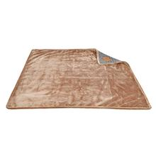 Da Vinci Dog Blanket By Pinkaholic - Brown