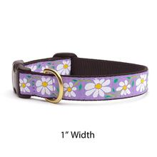 Daisy Dog Collar by Up Country