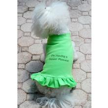 Daisy & Lucy Senior Moment Dog Dress - Lime