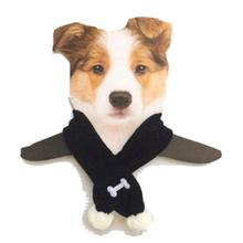 Dallas Dogs Bad to the Bone Dog Scarf