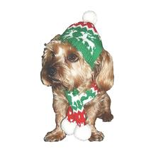 Dallas Dogs Holiday Reindeer Dog Hat and Scarf