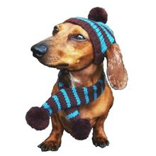Dallas Dogs Striped Dog Hat and Scarf - Turquoise and Brown