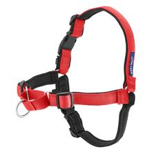 PetSafe Deluxe Easy Walk Harness - Rose/Black