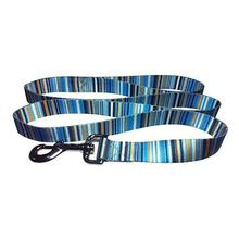 Multi-Stripes 5' Dog Leash - Blue
