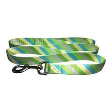 Diagonal Stripes 5' Dog Leash by Cha-Cha Couture - Green