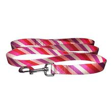 Diagonal Stripes 5' Dog Leash by Cha-Cha Couture - Pink