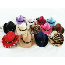 Dog Cowboy Hat - Purple Straw