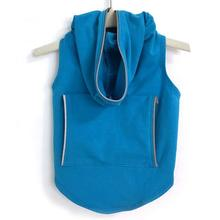 Dog Hoodie with Reflective Trim by Daisy and Lucy - Turquoise