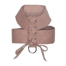 The Dog Squad Parisian Corset Dog Harness - Rosewood