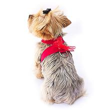 The Dog Squad Parisian Corset Dog Harness - Red