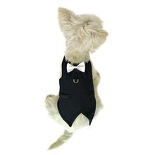 The DogFather Pinstripe Dog Tuxedo