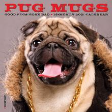Pug Mugs 2021 Mini Wall Calendar
