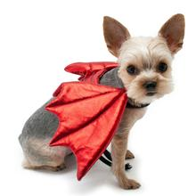 Dragon Wings Dog Costume by Dogo