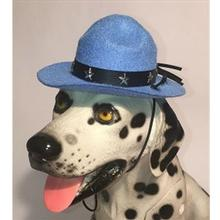 Drill Sergeant Dog Hat - Light Blue