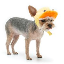 Duck Baseball Dog Hat by Dogo